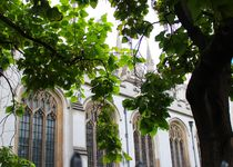 London, Westminster Abbey von visual-artnet