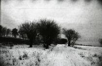 Black Trees von vrb vorobiov