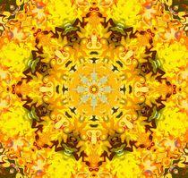 Kaleidoskop I by Ingrid Eichhorst