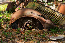 Rusted Remains II by Louise Heusinkveld