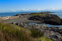 Trial Island and the Strait of Juan de Fuca from Beach Road by Louise Heusinkveld
