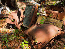 Rusted Remains by Louise Heusinkveld