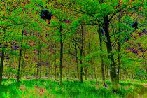 Digital-forest
