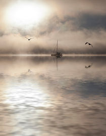 Yacht-two-gulls-flood