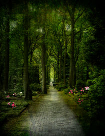 Auf dem Friedhof by Elke Balzen
