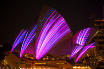Sydney Opera House during Vivid Festival von Sheila Smart