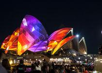 Sydney Opera House during Vivid Festival by Sheila Smart
