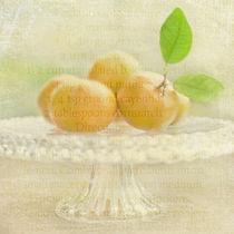 Organic Mandarins von Linde Townsend