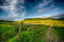 Scottish Countryside von Sam Smith