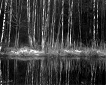 Black and White - SPIEGELUNGEN von Eckhard Röder