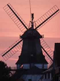 Alte Windmühle von Corinna Schumann