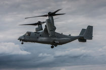 V-22 Osprey United States Air Force by P M