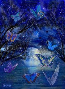 Der Tanz der Schmetterlinge von Heidi Schmitt-Lermann