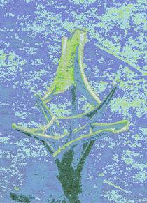 Wasserpflanze von lisa-glueck