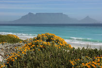 southafrica ... table mountain von meleah