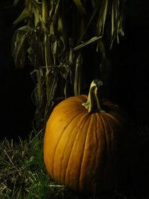 Pumpkin Pumpkin Big and Round von Guy  Ricketts