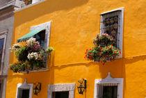 PUEBLA HOUSE Mexico von John Mitchell