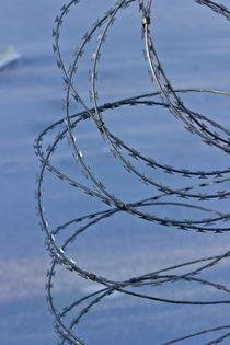 barbed wire by Karsten Müller