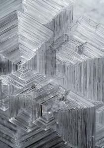 Ice Crystals by Vitya Lyagushkin