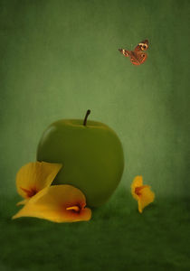ONE APPLE FELL by tomyork