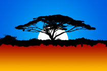 africa free wild sun by Rafal Kulik