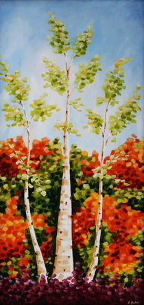 Silver Birch by Ruth Baker