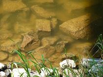Blick auf Steine im Fluss von Eva-Maria Di Bella