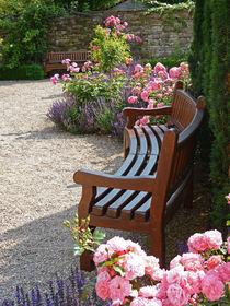 Rose Garden - Oase der Ruhe im Rosengarten von Eva-Maria Di Bella