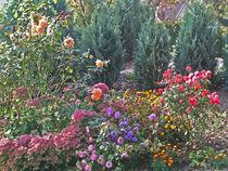 Romantischer bunter Blumengarten - Flowers in the Garden von Eva-Maria Di Bella
