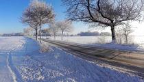 Das Winterland schafft Landstraße | Winter's land creates rural road | El país de invierno crea carretera von artistdesign