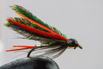Trout fishing fly von Craig Lapsley