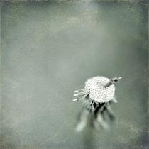 Wishful Thinking von Trish Mistric