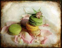 French macarons by barbara orenya