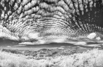 Panoramablick auf die Hornisgrinde by Walter Layher