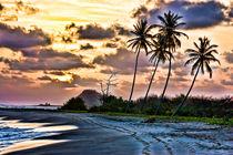Grenada Sunrise by Don Schwartz