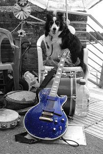 Guitar Dawg  von Rob Hawkins