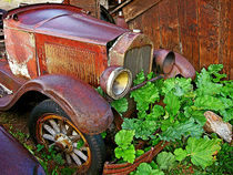 Rusted Antique Auto by Dale Bargmann