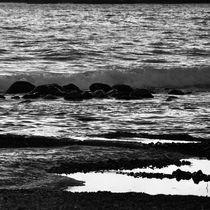 Seashore von Benoît Charon