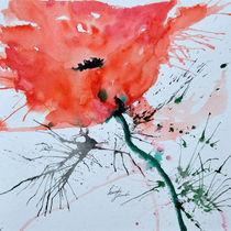 einsame Mohnblume by Ismeta  Gruenwald