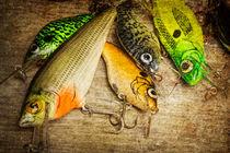 Stlf-fishing-crankbaits-dads-0070
