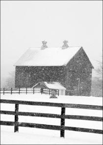 Ldsp-barn-snowstorm