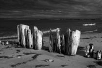 Shore Pilings on Prince Edward Island von Randall Nyhof