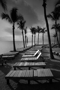 Sesp-sunbathing-benches-key-islamorada-bw