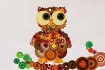 Spiral Owl by rachelevansdesigns