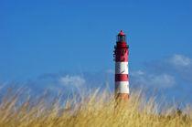 Der Leuchtturm (Insel Amrum) von AD DESIGN Photo + PhotoArt