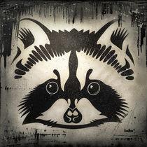 Raccoon von Mike Knobel