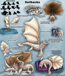 Sailback Design Sheet by Rushelle Kucala