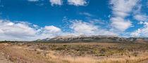 Steppe-panorama