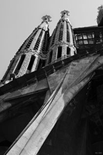 [barcelona] - ... sagrada familia by meleah