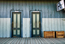 Bathroom-doors-org